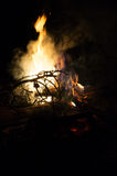 Fire flames and pine tree brunch burning Royalty Free Stock Image