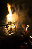 Fire flames and pine tree brunch burning Stock Photos