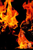 Fire flames raising, Burning fire close-up Royalty Free Stock Photo