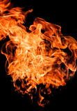 Fire flames raising high Stock Image