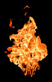 Fire flames raising high Royalty Free Stock Photos
