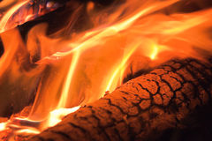 Fire flames raising over charcoals Royalty Free Stock Photography