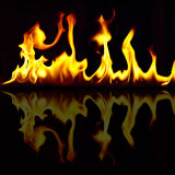 Fire flames. Fire with reflection on black background Stock Photography