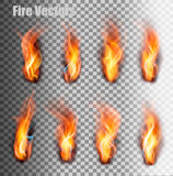 Fire flames set. Vector. Fire flames set on transparent background. Vector Royalty Free Stock Images