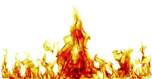 Fire flames. On white background Royalty Free Stock Photos
