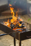 Fire, flames from wood ember for grill or bbq picnic Stock Images