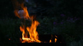 Fire flaming in the  brazier stock video footage