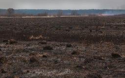 Fire on flood plains Stock Photo