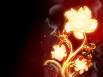 Fire Flower. Excellent fire flower on red background Stock Photo