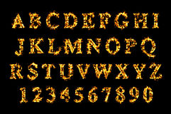 Fire font, alphabet of flame. Stock Photos