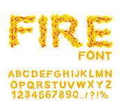 Fire font. Burning ABC. Flame Alphabet. Fiery letters.  Hot typo Stock Image