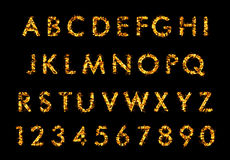 Fire font letter, alphabet in flames. Fire font, alphabet in flames on black background Royalty Free Stock Photo