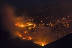Fire in the forest. Fire in the mountain forest Royalty Free Stock Image