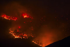 Fire in the forest. Fire in the mountain forest Royalty Free Stock Photography