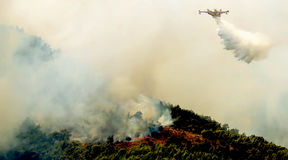 Fire in forest areas in Viotia in Central Greece.  royalty free stock photo