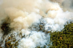 Fire in forest areas in Viotia in Central Greece.  royalty free stock photos