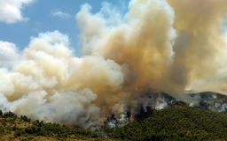 Fire in forest areas in Viotia in Central Greece.  stock images