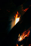 The fire in the forest, Bonfire. Adventure Evening Outdoor Outdoorlife Forest Wood Freedom Bonfire Fire Coals Royalty Free Stock Photography