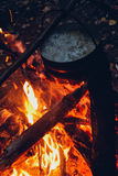 The fire in the forest, Bonfire, Cooking camp food Royalty Free Stock Photos