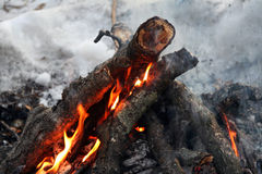 Fire on the snow, burning wood and branches. Stock Photography