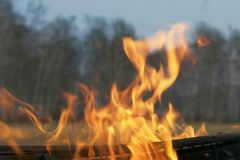 Fire in the forest. Spring fires. Fire hazard stock photos