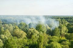The fire in the wood. Photographing from height of bird`s flight. Royalty Free Stock Photography