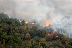 Fire in the forest of wildfire. Photographed from a helicopter Royalty Free Stock Image