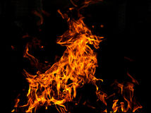 Fire goat Royalty Free Stock Photo