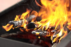 The fire in the grill. Fire with wood in a brazier for cooking marinated meat during picnic Stock Photos