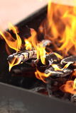 The fire in the grill. Fire with wood in a brazier for cooking marinated meat during picnic Royalty Free Stock Photography
