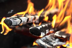 The fire in the grill. Fire with wood in a brazier for cooking marinated meat during picnic Stock Image