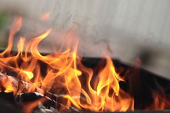 The fire in the grill. Fire with wood in a brazier for cooking marinated meat during picnic Royalty Free Stock Image