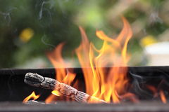 The fire in the grill. Fire with wood in a brazier for cooking marinated meat during picnic Stock Photography