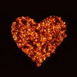Fire heart on black backgrounds. Fire heart on black background Stock Images