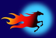 Fire horse. Colourful illustrated fire horse image with blue background Stock Images