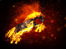 Fire horse. Beautiful running fiery horse on abstract background Royalty Free Stock Photography