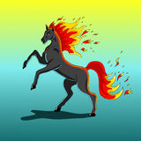 Fire Horse. A horse with a fiery mane and fiery tail Stock Images