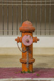 Fire Hose hydrant Stock Photography
