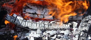 Fire on hot live charcoal extreme closeup Royalty Free Stock Images