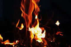 Fire. Hot fire on a summer evening Stock Images