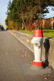 Fire hydrant. Modern Fire Hydrant along a street Stock Photography