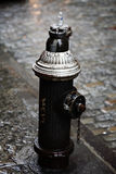 Fire hydrant. A black fire hydrant in new york Royalty Free Stock Photography