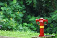 Fire hydrant. In the parks stock images