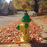 Fire hydrant on autumn street Royalty Free Stock Photos