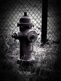 Fire hydrant Black and white Royalty Free Stock Photo