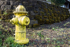 Fire Hydrant Cannon Beach. Yellow fire hydrant in Cannon Beach Oregon Stock Photography