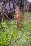 Fire hydrant and coal cars Royalty Free Stock Photography