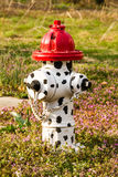 Fire Hydrant with Dalmation Spots. White fire hydrant with black spots on it with a red top stock photo