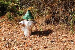Fire Hydrant in Fall Setting stock image