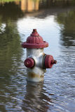 Fire Hydrant in Flood Water Royalty Free Stock Images